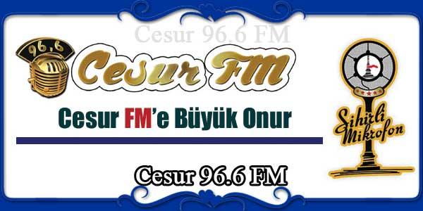 Cesur 96.6 FM