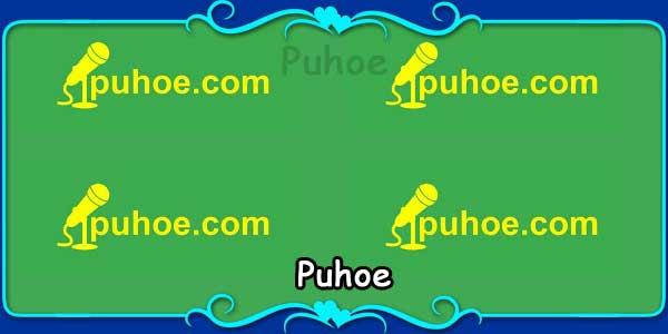 Puhoe